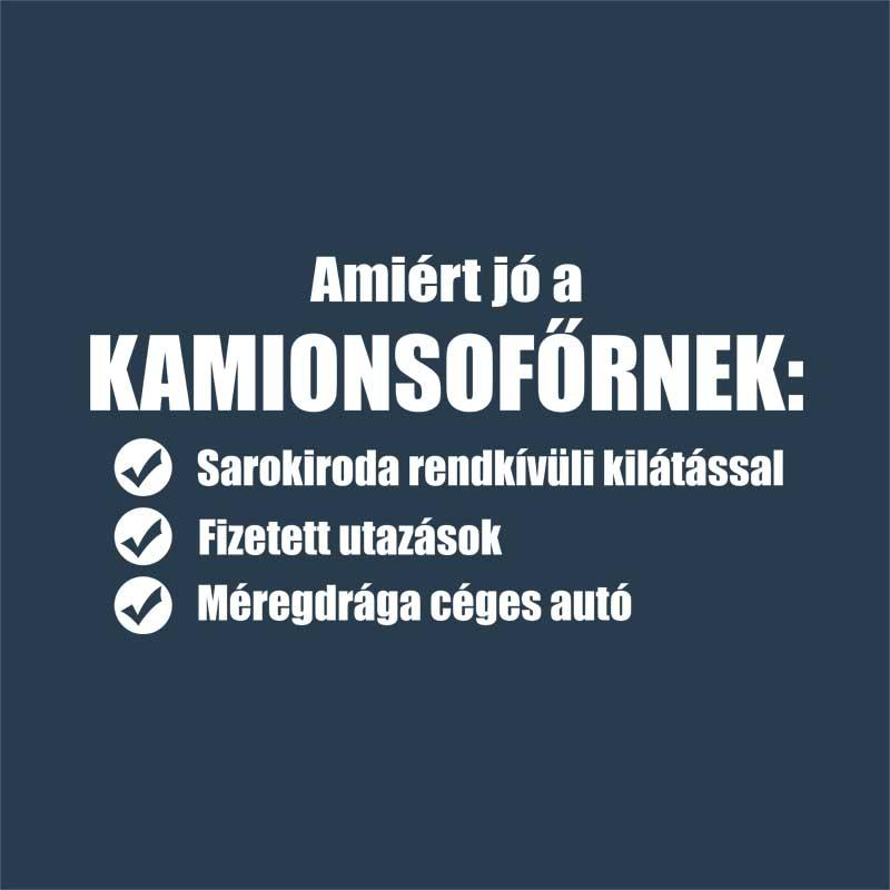 Image result for kamionos vicc